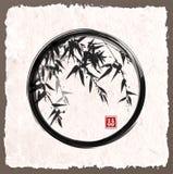 Bamboo trees in black enso zen circle Royalty Free Stock Photos