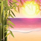 Bamboo trees and leaves on the sand beach Royalty Free Stock Photo