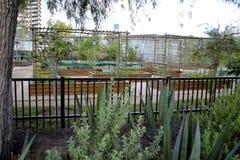 Bamboo trellis black garden fence Stock Photo