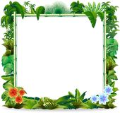 Bamboo Tropical Jungle Background. Bamboo Frame on Tropical Jungle Background Stock Photo