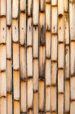 Bamboo trunk background. Stock Image