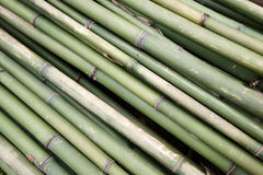 Bamboo tube background Royalty Free Stock Image