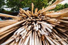 Bamboo tube sharp end Stock Images