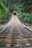 Bamboo tunnel bridge Stock Photos
