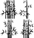 Bamboo, vector Stock Photo