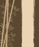 Bamboo vector background Royalty Free Stock Photos
