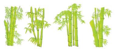 Bamboo vector design art set Stock Photo