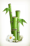 Bamboo vector icon Stock Image