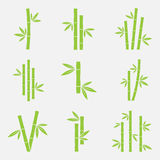 Bamboo vector icon. Set on a white background. Silhouettes of bamboo trunks, stems, or trees with leaves. Green symbols tropical bamboo vector illustration