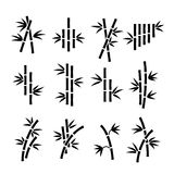 Bamboo vector icons. Asian  plant stalks and leaves isolated on white background Royalty Free Stock Photography