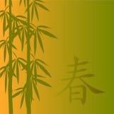 Bamboo vector illustration Stock Image