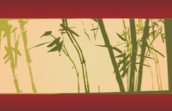 Bamboo, vector illustration Stock Images