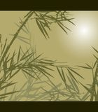 Bamboo, vector illustration Stock Photography