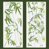 Bamboo vector illustration Stock Photos