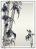 Bamboo vector in traditional asian style. Stock Image