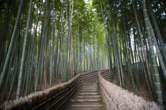 Bamboo walk Adashino Nembutsu-ji Temple Stock Image