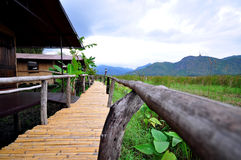 Bamboo walk way Royalty Free Stock Image