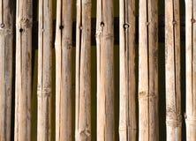 Bamboo walkway Royalty Free Stock Photo