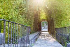 Bamboo walkway entrance to the park Royalty Free Stock Photography