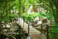 Bamboo walkway in the forest Stock Photo