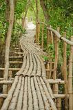 Bamboo walkway in Mangrove forest Royalty Free Stock Photos