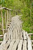 Bamboo walkway in Mangrove forest Stock Photo