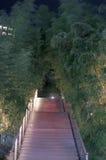 Bamboo walkway, night Stock Photo
