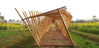 Bamboo walkway The bamboo sticks stock photography