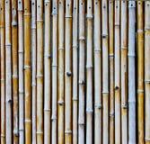 Bamboo wall 1 Royalty Free Stock Image