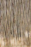 Bamboo wall Royalty Free Stock Photos