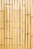 Bamboo wall Stock Image