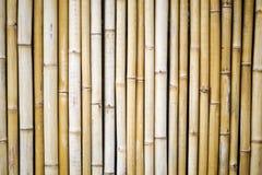 Bamboo Wall Stock Photos