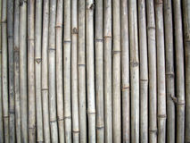 Bamboo wall. Texture background of a bamboo wall Stock Photo