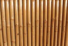 Bamboo wall. Background closeup brown bamboo wall in Laos Stock Image
