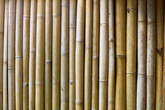 Bamboo wall. Aged bamboo wall background texture Stock Photography