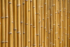 Bamboo wall Royalty Free Stock Photography
