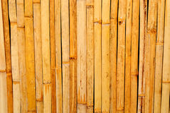 Bamboo wall Stock Images