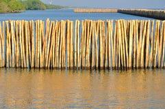 Bamboo wall. In mangrove education center at Samut Sakhon, Thailand Royalty Free Stock Photo