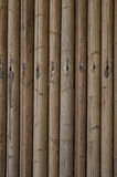 A bamboo wall. Royalty Free Stock Image