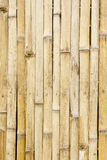 Bamboo wall background Royalty Free Stock Photo