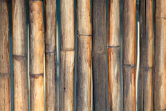 Bamboo wall background Stock Photo