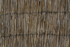 Bamboo wall. Background of bamboo Royalty Free Stock Photos
