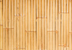 Bamboo wall background Royalty Free Stock Image
