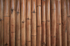 Bamboo wall background in the building. Close up bamboo wall Stock Image