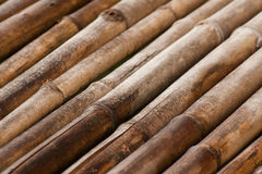 Bamboo wall background. Background image made from bamboo stems Stock Photos