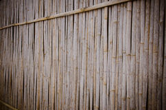 bamboo wall background Royalty Free Stock Photo