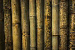 Bamboo wall background and texture Stock Photography
