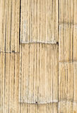 Bamboo wall. Royalty Free Stock Photo