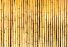Bamboo wall background Royalty Free Stock Photos