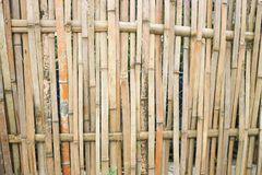 Bamboo wall or bamboo fence. In asia Royalty Free Stock Images